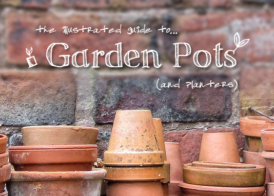 The Illustrated Guide to Garden Pots and Planters