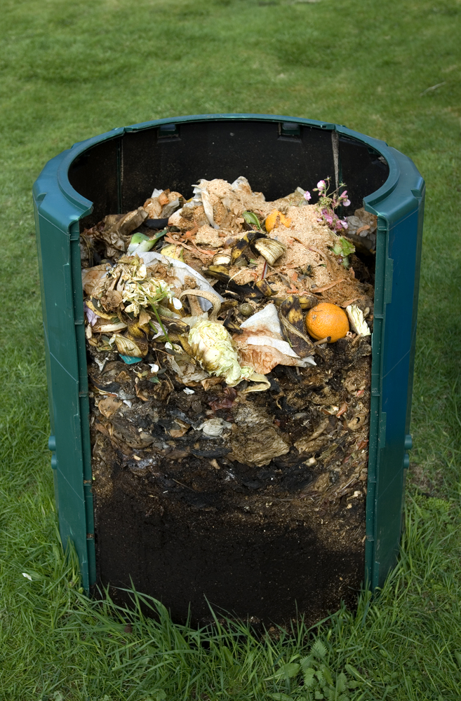 Compost Bin Cross-Section