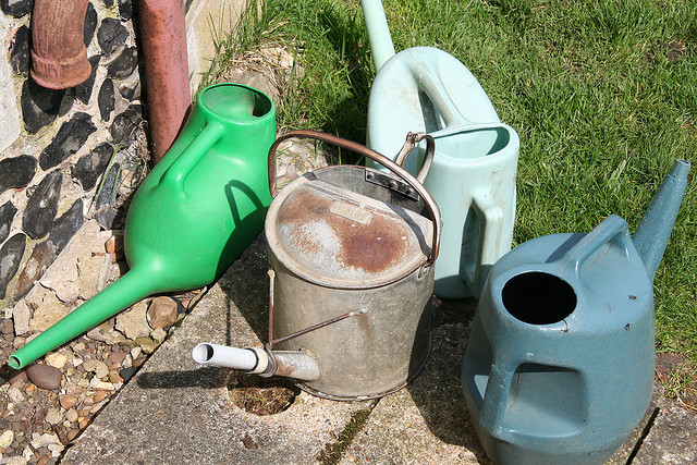 Plastic Watering Cans!
