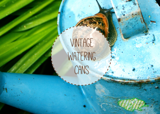 A blue vintage watering can with a snail on the lid.
