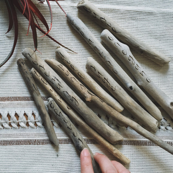 Driftwood plant tags.