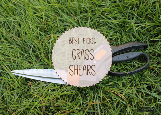 Best Manual Grass Shears