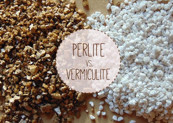Image result for perlite