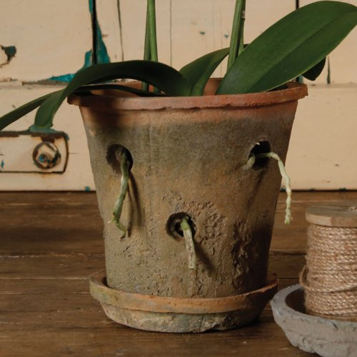 Best orchid pots planters tips reviews urban turnip for Terracotta works pots