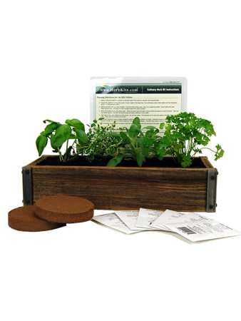 Best indoor herb garden kits reviews top picks Urban Turnip